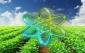 فناوری هسته ای ابزارمهم در پژوهش های کشاورزی